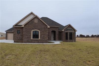 Blanchard Single Family Home For Sale: 241 Meadow Lark Lane
