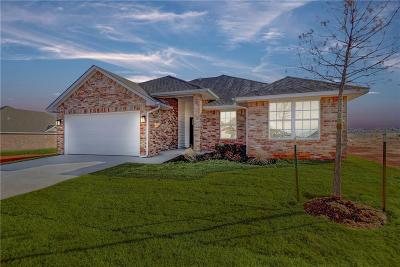 Piedmont Single Family Home For Sale: 13920 Northwood Village Drive