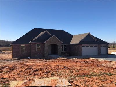 Blanchard Single Family Home For Sale: 3853 Bluestem Circle