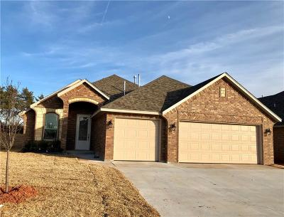 Norman Single Family Home For Sale: 1215 Stone Creek Drive