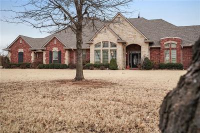 Oklahoma City Single Family Home For Sale: 11125 Vineyard Road
