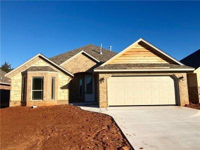 Norman Single Family Home For Sale: 1219 Stone Creek
