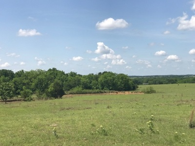 Residential Lots & Land For Sale: ?? Cr 1655
