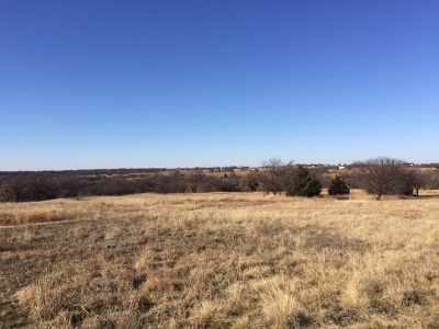 Duncan, Marlow, Comanche, Velma, Rush Springs, Waurika,  Residential Lots & Land For Sale: 701 Prospector's Ridge Drive