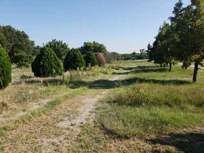 Duncan, Marlow, Comanche, Velma, Rush Springs, Waurika,  Residential Lots & Land For Sale: Ballpark