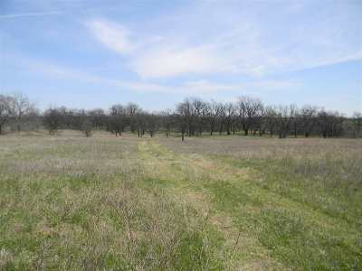 Residential Lots & Land For Sale: Buck King Blvd