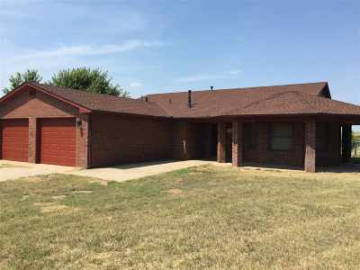 Single Family Home For Sale: 42690 S Co Rd 205
