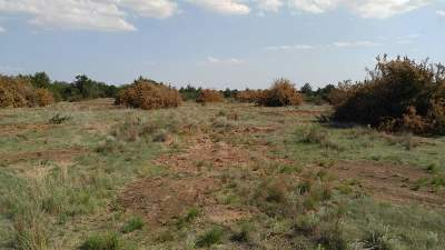Residential Lots & Land For Sale: T21 R17 Sections 17-20