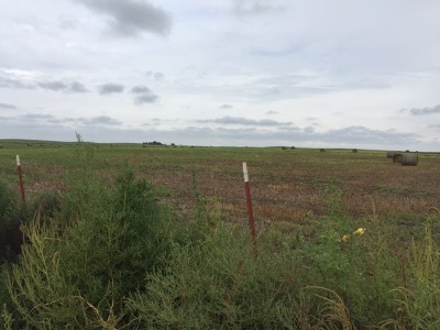 Residential Lots & Land For Sale: Rr2 Box 83
