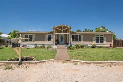 Single Family Home For Sale: 38954 S County Rd 203 #6a & #6b