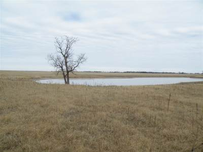 Residential Lots & Land For Sale: 4910 W Phillips Ave