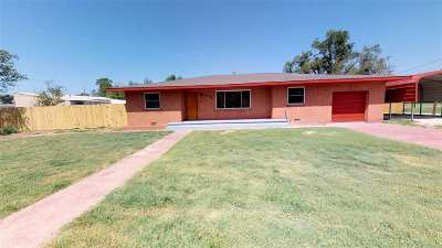 Single Family Home For Sale: 509 S Hill