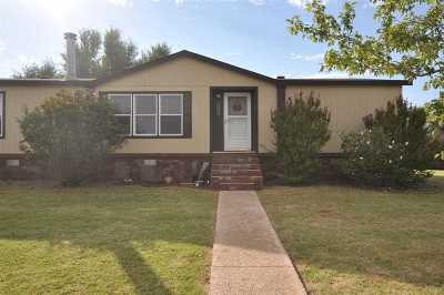 Single Family Home For Sale: 5124 S Redeemer Ln