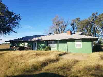 Single Family Home For Sale: 7119 County Road 610