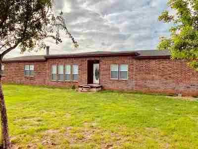 Single Family Home For Sale: 51497 S County Road 199