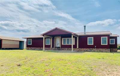 Single Family Home For Sale: 51797 S County Rd 203