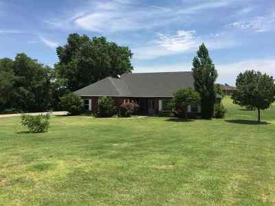 Single Family Home For Sale: 42266 S County Road 203