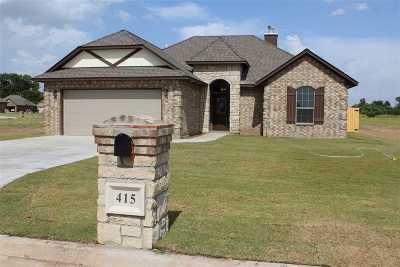 Cache Single Family Home For Sale: 415 Mountain Meadow Dr