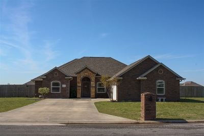 Elgin Single Family Home For Sale: 1112 Brandi Dr