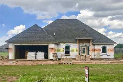Elgin Single Family Home For Sale: 291 NE Simmons Cir