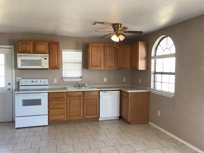 Elgin Single Family Home For Sale: 110 2nd St