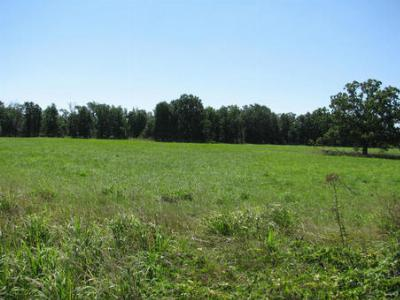 Residential Lots & Land Sale Pending: S 640 Rd