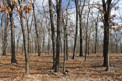 Grove OK Residential Lots & Land For Sale: $175,000