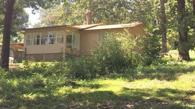 Disney Single Family Home For Sale: 260 Center St