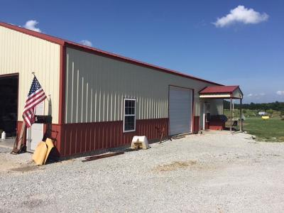 Craig County, Delaware County, Mayes County, Ottawa County Single Family Home For Sale: 28850 S 690 Rd