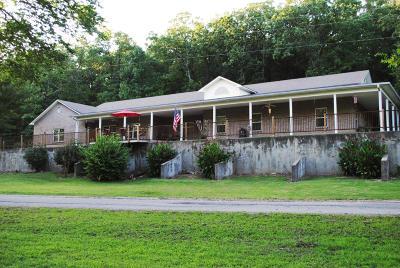 Afton Single Family Home For Sale: 53010 E 260