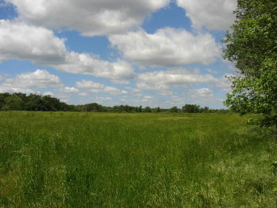 Farm & Ranch For Sale: 5573 N State Hwy 43