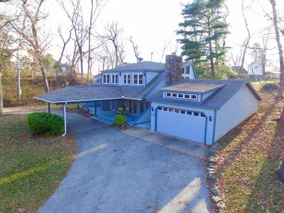 Afton Single Family Home For Sale: 100 Circle Dr