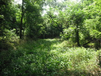 Fairland OK Residential Lots & Land For Sale: $185,000