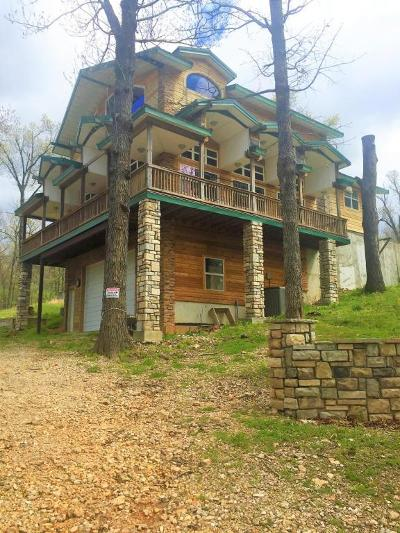 Afton Single Family Home For Sale: 24541 S Lakeview Rd