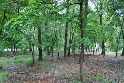 Afton Residential Lots & Land For Sale: Pidgeon Hawk