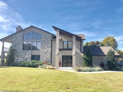 Afton Single Family Home For Sale: 32911 Mockingbird Ln