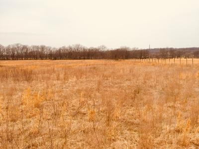 Afton Residential Lots & Land For Sale: 26235 Ok-125