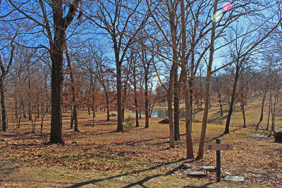 Afton Residential Lots & Land For Sale: 453289 Tradition Cir