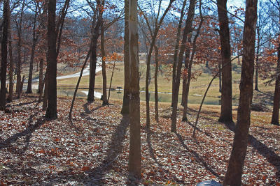 Afton Residential Lots & Land For Sale: 453297 Tradition Cir