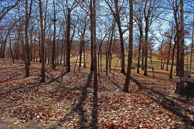 Afton Residential Lots & Land For Sale: 453303 Tradition Cir