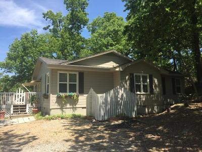 Craig County, Delaware County, Mayes County, Ottawa County Single Family Home For Sale: 287 Okay Rd