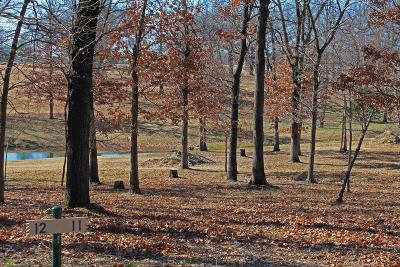 Afton Residential Lots & Land For Sale: 453307 Tradition Cir