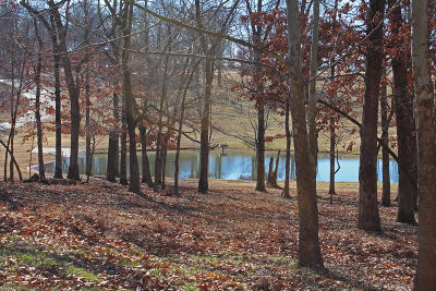 Afton Residential Lots & Land For Sale: 453311 Tradition Cir