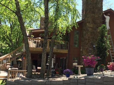 Afton Single Family Home For Sale: 56913 E Oak