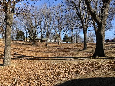 Residential Lots & Land For Sale: 33717 Ridge Rd