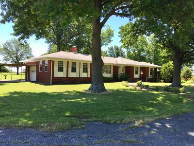 Afton Single Family Home For Sale: 502 S Moore