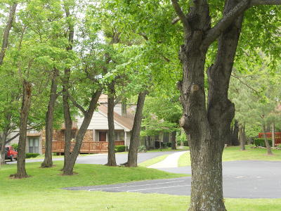 Afton Multi Family Home For Sale: 33601 Dogwood Cliff Townhomes