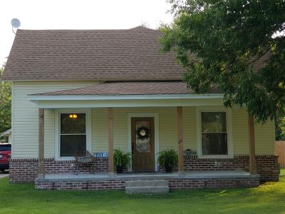 Afton Single Family Home For Sale: 109 S Downing Ave