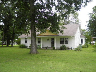 Afton Single Family Home For Sale: 208 S Locust Ave