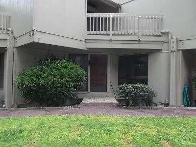 Delaware County, Mayes County, Rogers County, Wagoner County, Craig County, Ottawa County, Adair County, Cherokee County Condo/Townhouse For Sale: 29898 S 566 Rd #213